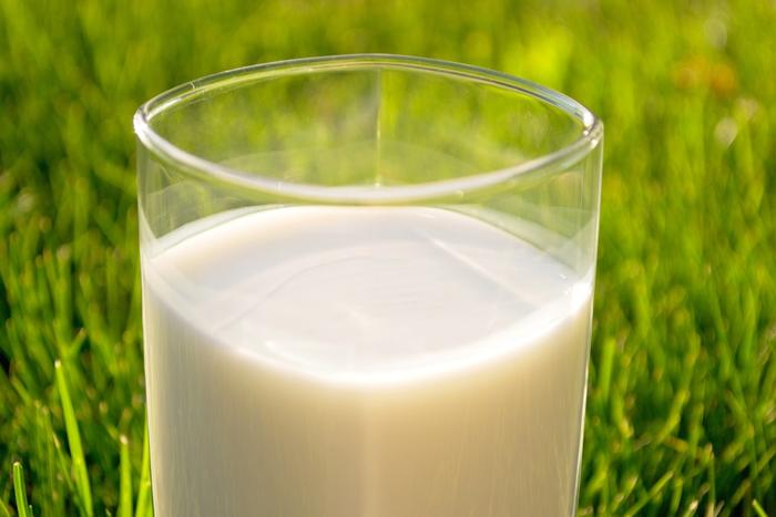 Drinking raw milk can come with serious health risks